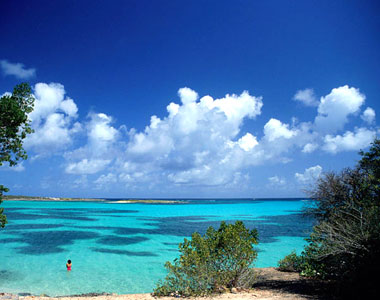 orderoffshore-anguilla